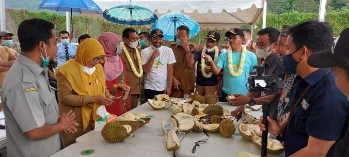 Gubernur Sumbar Ajak Solsel Tentukan Satu Nama Khas Durian Terbaiknya