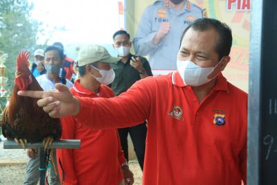 Irjen Pol Toni Harmanto buka Lomba Ayam Kukuak Balenggek Piala Kapolda Sumbar Cup